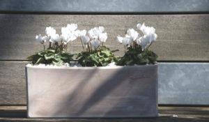 Jardinière Botanic. Aménager sa terrasse, balcon avec Notes de Styles