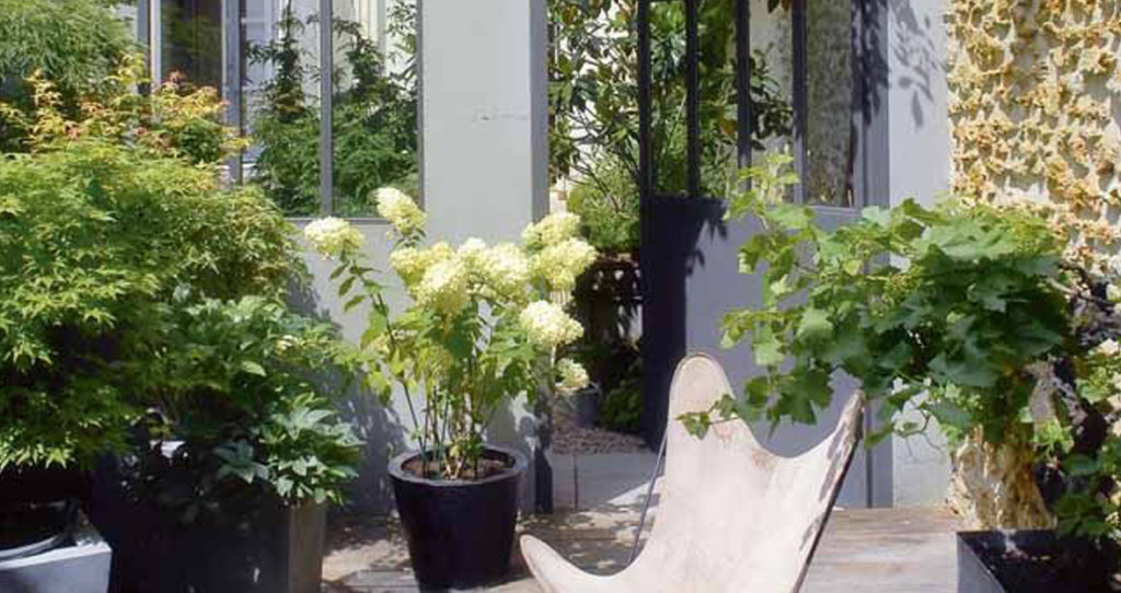 aménager son patio avec de la verdure