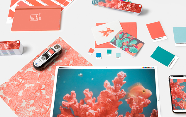 Pantone Color of the Year 2019 Living Coral in Graphic and Packaging Design