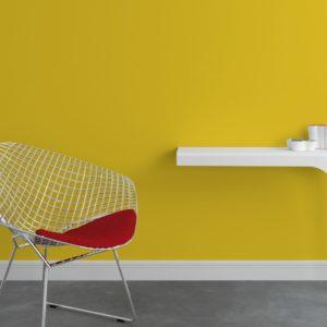 Peinture jaune citron - 4 Murs