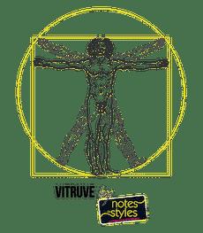 Logo vitruve